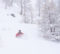 Ny flik i huvudmenyn – Vintertips