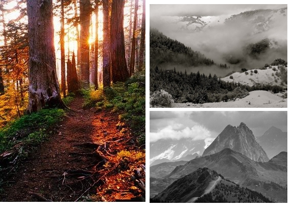 trailrunning Trailrunning inspiration