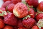 jordgubbe 150x150 Skördetips