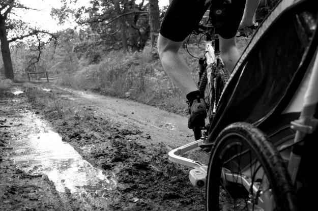 mountainbike chariot