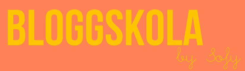 bloggskola