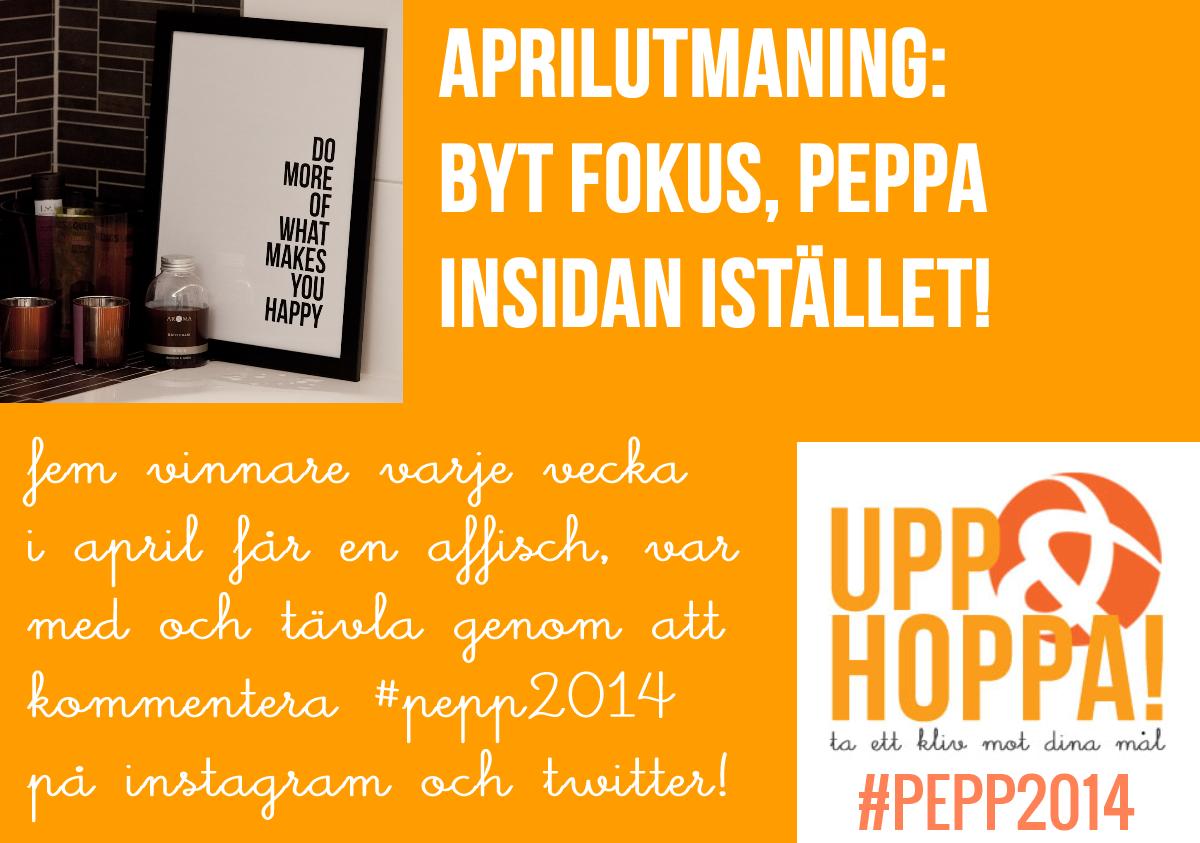 pepp2014