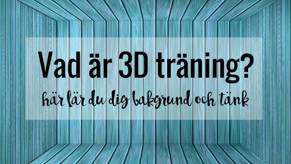vad ar 3D traning