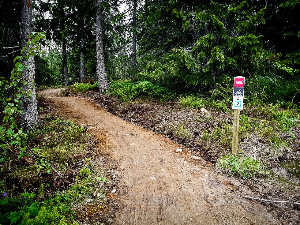 mountainbikeleder bjornen