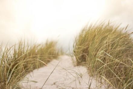 sand-691710_1280