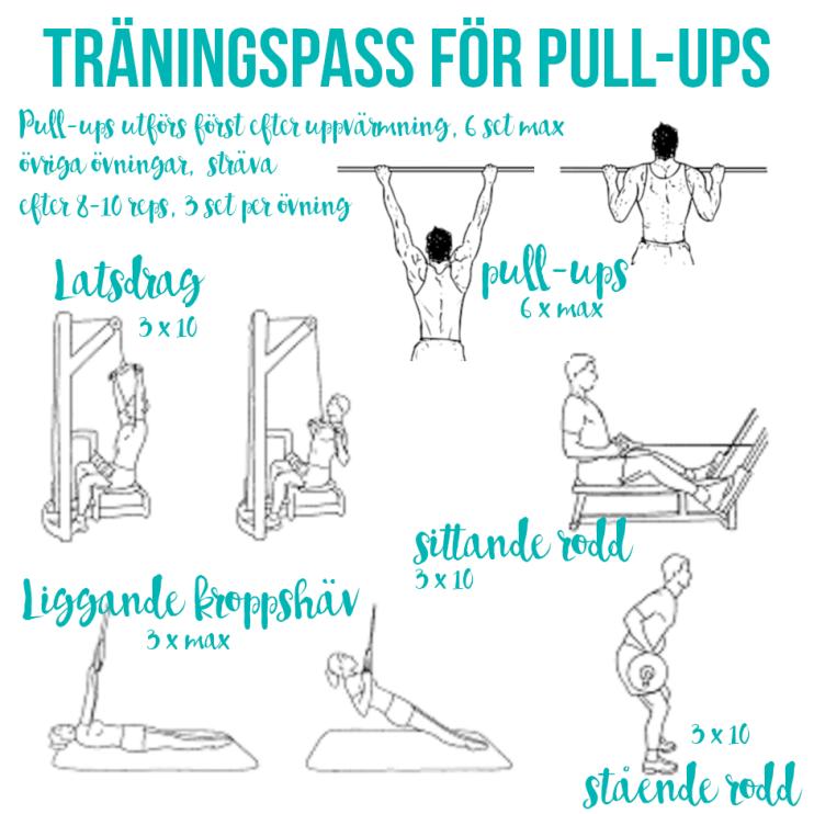 traningspass-for-pull-ups