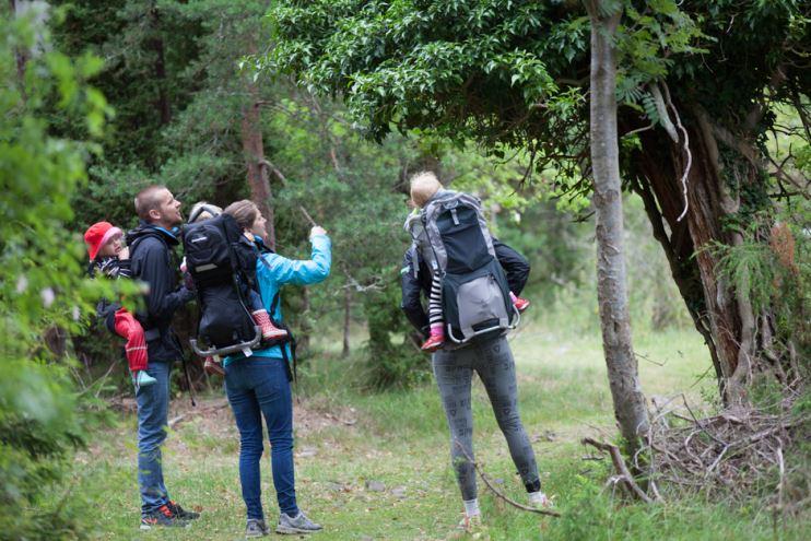 trollskogen öland bilder-2-2