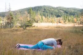 yogaposition halv duva